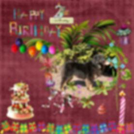 Coco 2nd Birthday.jpg