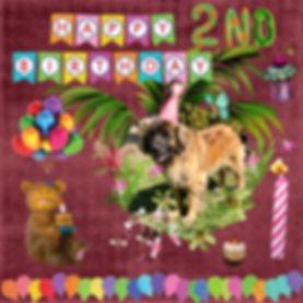My Album 19 Coco-001.jpg