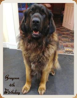 Grayson 4th birthday