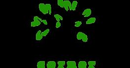 HYDE PARK LOGO_green.png