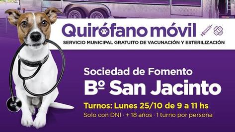 Castraciones gratuitas: el quirófano móvil visitará San Jacinto