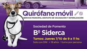 Barrio Siderca: hoy se entregan turnos para castraciones gratuitas