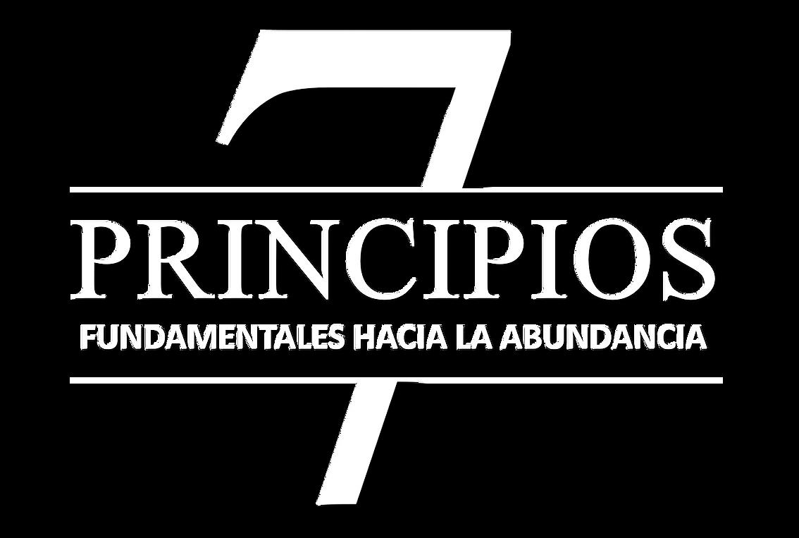 7 principios final.png