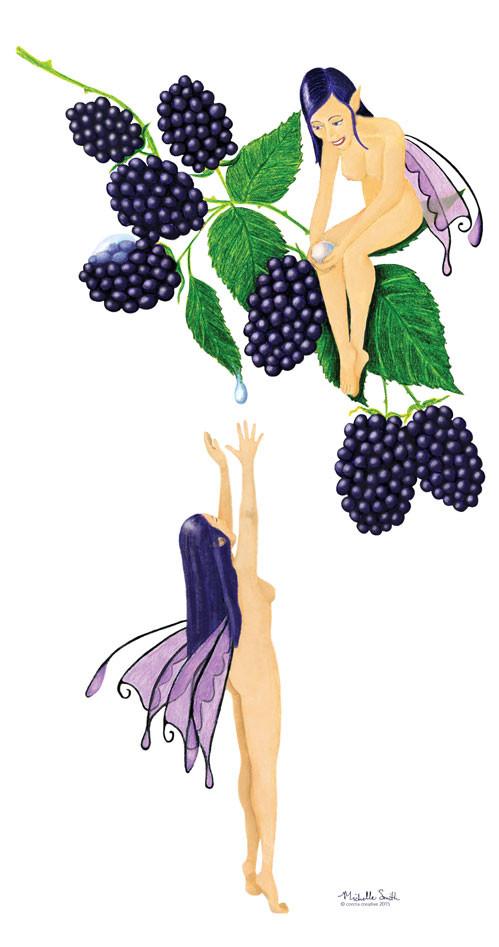 Blackberry Faerie