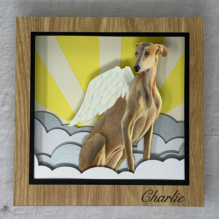 Illustrated Shadow Boxes