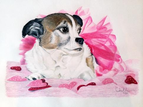 Trudy - Chihuahua