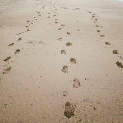 Our Footprints in the sand #vacation #beach #bayoffundy #grandmanan #mygirls #vanlife #Rvlife #Rvliving #roadtrip #travel #blog #wanderlust #lovelife #pupontheroad #chasinghappinessandsparksofmagic #nomad #canada #vagabond #liveyourbestlife   #explorecanada #vanliving #boondocking #VanLifeDreams #bestwoof