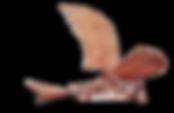 Logo%2520PLanes%2520%2526%2520Parts%2520