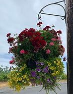 06 Hanging basket_edited.jpg