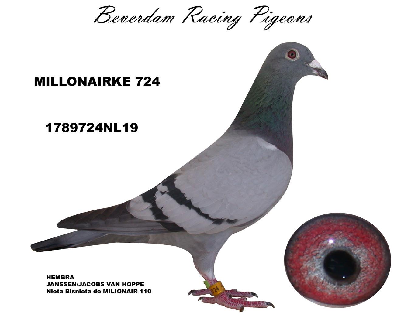 NL19-1789724 term.jpg