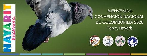 Imagen de la Convención.jpg