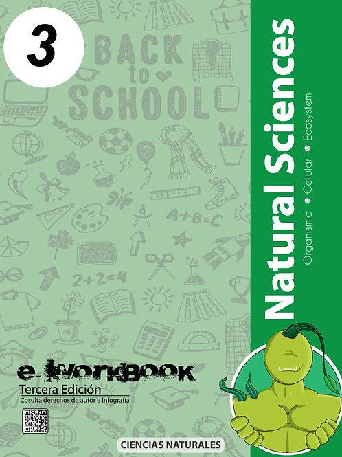 Modulo Productivo de Aprendizaje (Cn. 3)