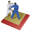 judo-icon.png