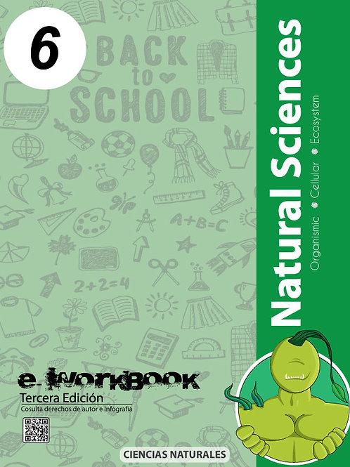 Modulo Productivo de Aprendizaje (Cn. 6)
