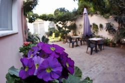 patio2bis.JPG