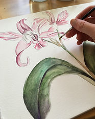 Painting orchid for enticement.JPG