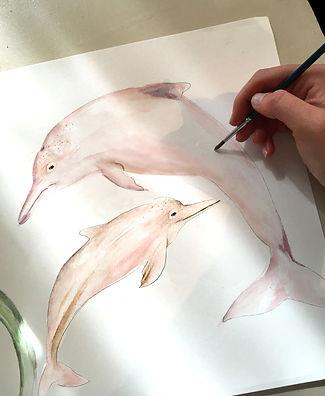 river dolphins.jpg