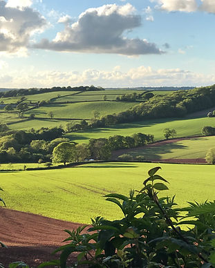 East Coombe Farm view.JPG
