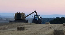 relax and watch the farmers at work