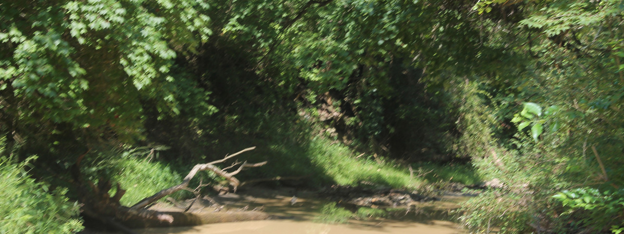 Trails 7.JPG