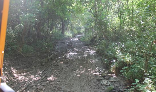 Trails 12.JPG
