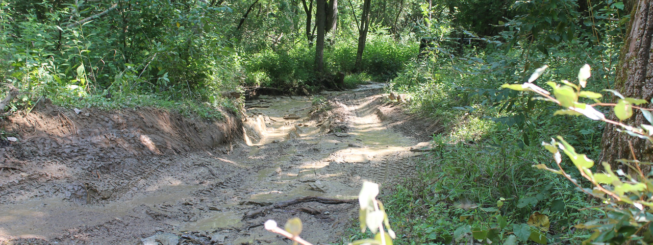 Trails 8.JPG