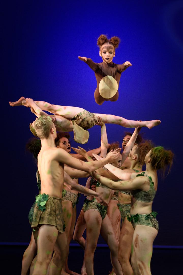 Winner -  Tarzan