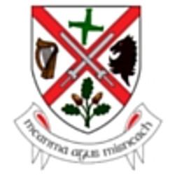 Kildare Co. Council
