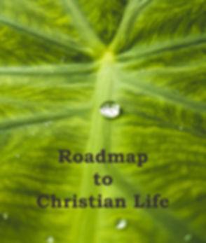water-droplet-on-green-leaf- BulletinNew
