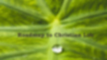 water-droplet-on-green-leaf- Webstrip.jp