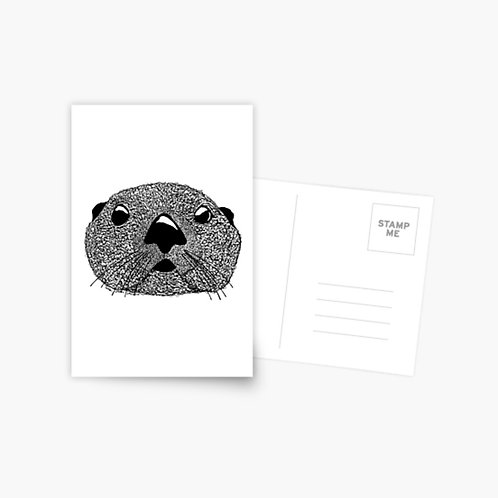 Postcard - Squiggly Otter