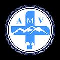 LOGO-AMV-2020-B WEB.png