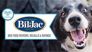 Dog-Food-Brand-Review-Template-biljack.j