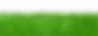green-1966417_1920.png