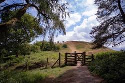 Earls Hill