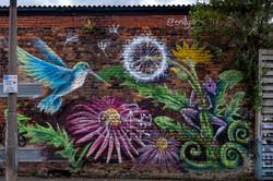 Street Art by @emilygrayart