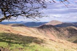 Stretton Hills