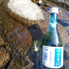 おすすめしたい高知のおいしい日本酒🍶
