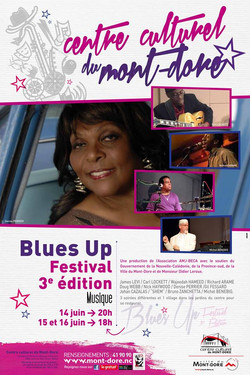 Blues Up International Festival