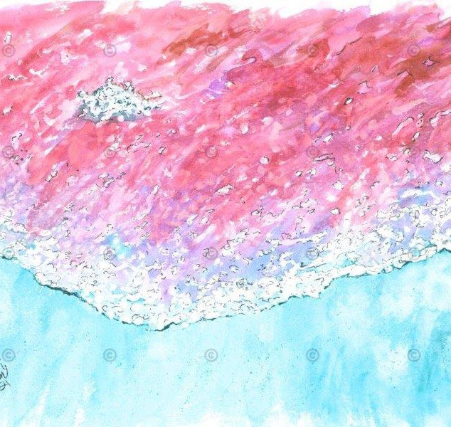 Bord de Mer à faire rêver IMG_0332 (c).jpeg