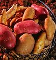 Pommes de terre.png