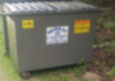 dumpsters_edited.jpg