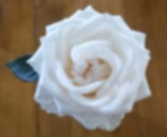White rose top shot.jpg
