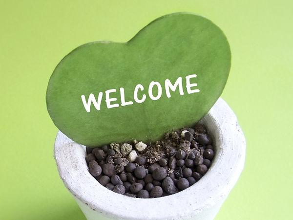 歓迎のイメージ