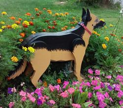 Roscoe the dog greeter