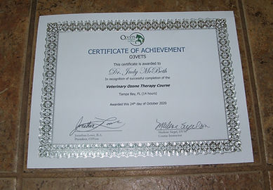 Ozone training certificate 11-2020.JPG