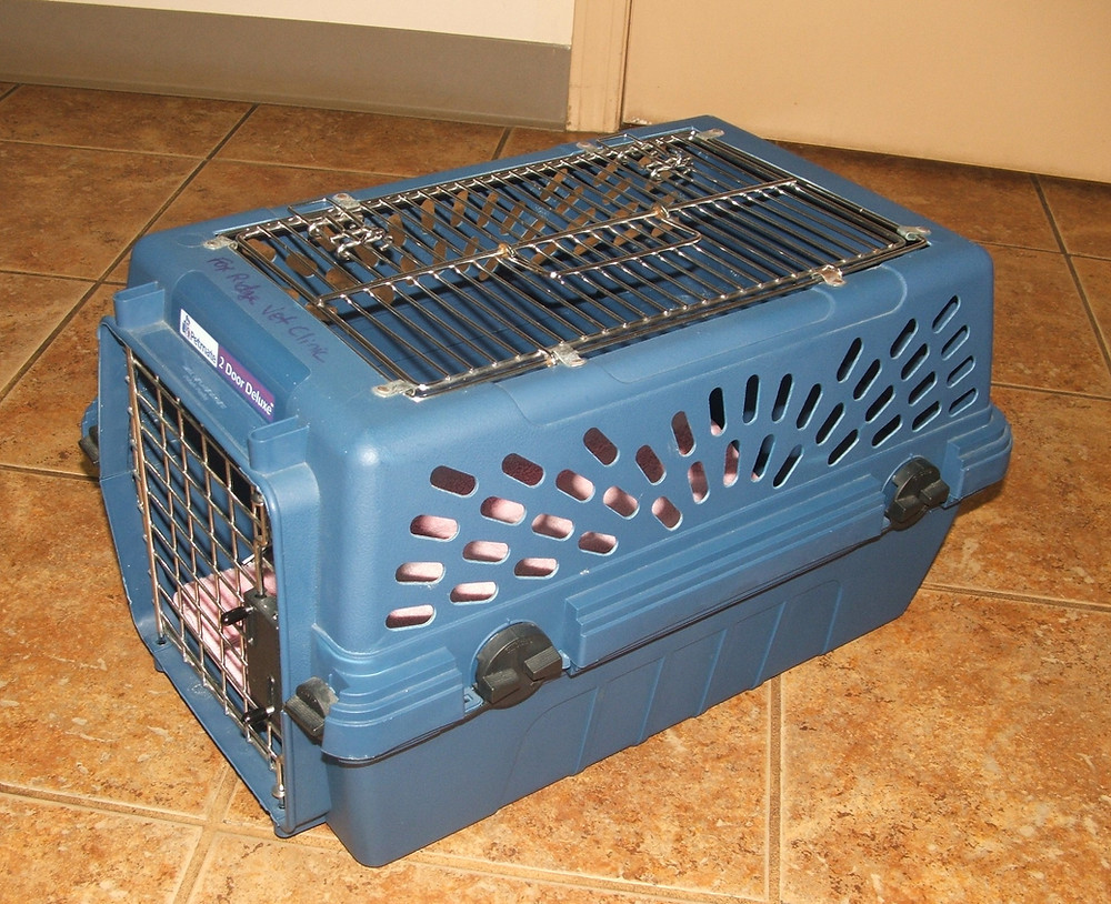 Example of easy-open cat carrier