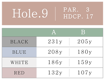 HOLE_09.png