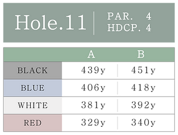 HOLE_11.png