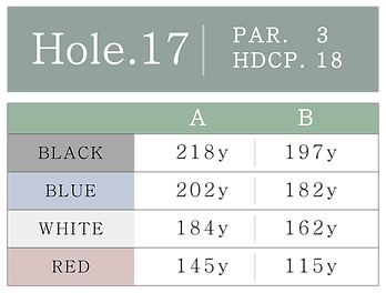 HOLE_17.png